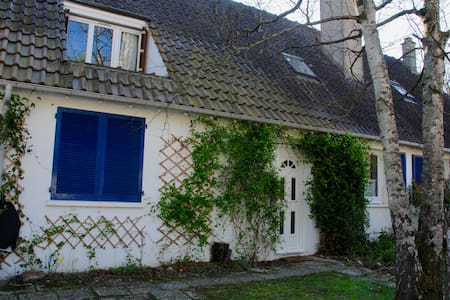 House with a big garden with trees 45km from Paris - Saint-Fargeau-Ponthierry - 独立屋