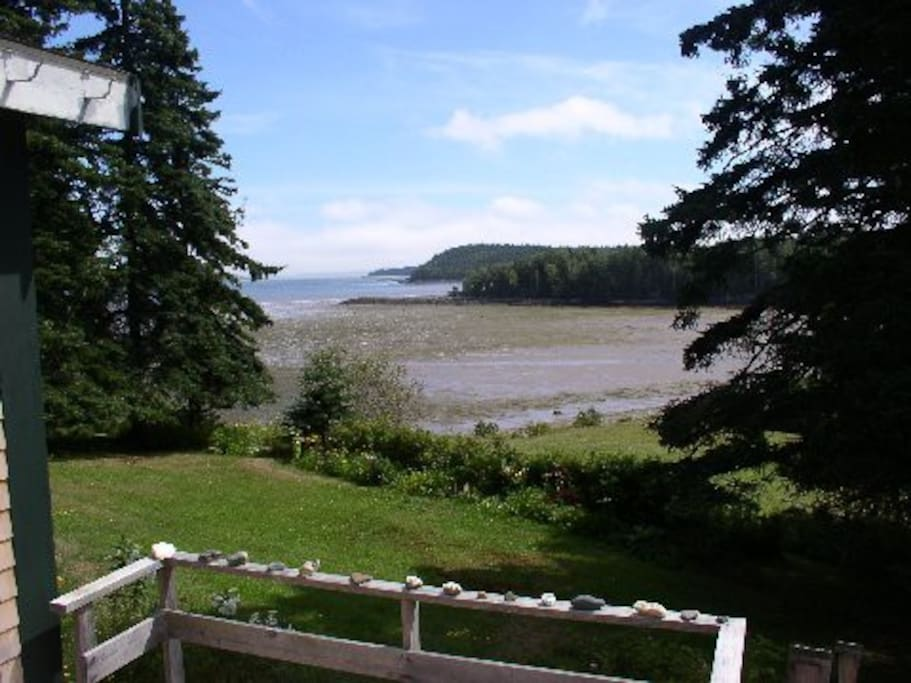 A view from the deck