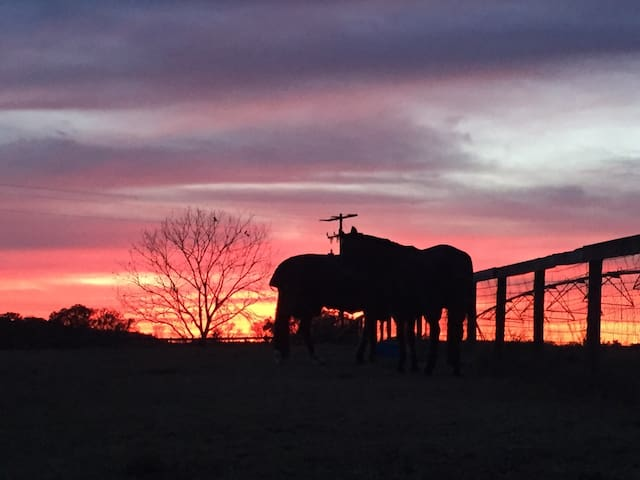 Sundown Ranch