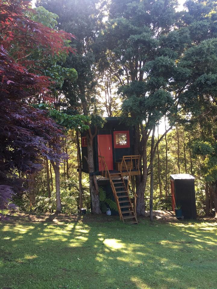 Beautiful little hut, nestled amongst the trees!!