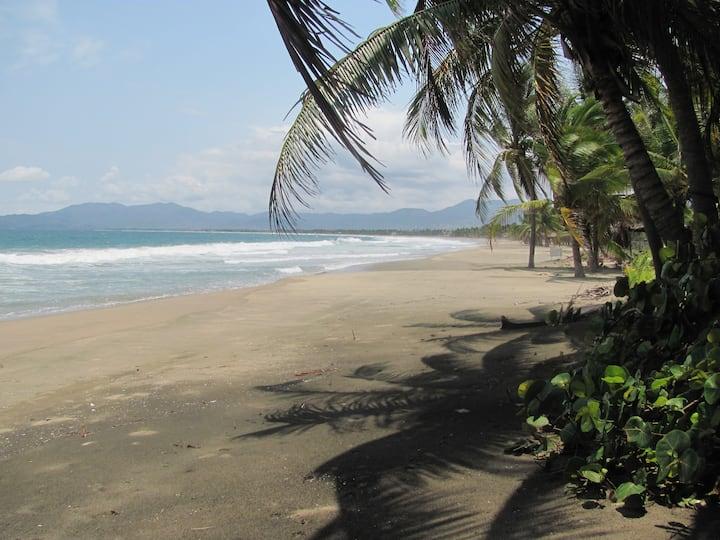 Ocean Lover's Paradise