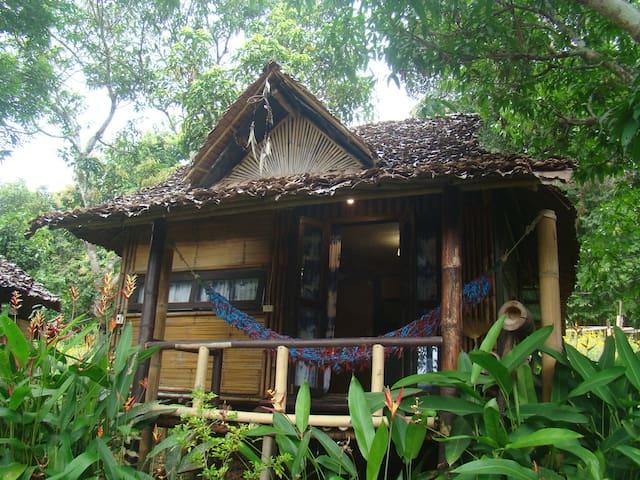 Re-wild House , Big Bungalow