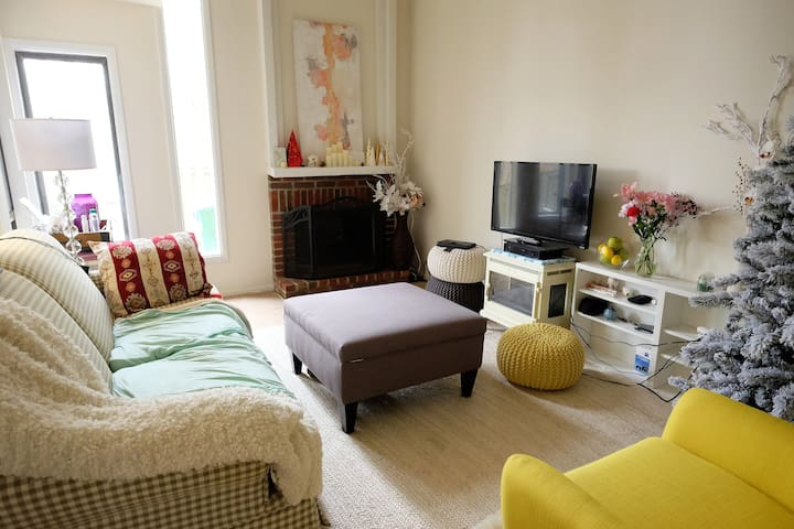 Master bedroom with private bath, Wi-Fi, dogs ok - Germantown - House