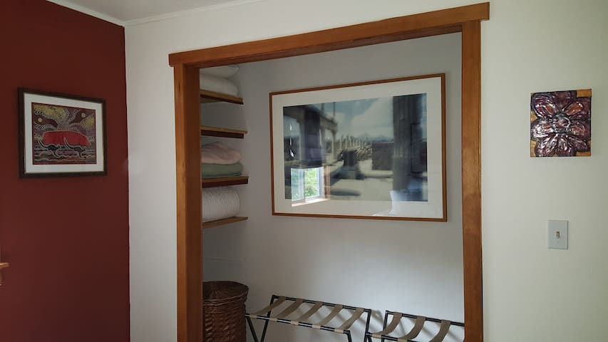 Luggage racks and shelves in open bedroom closet.