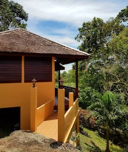 Private Jungle Nature\Yoga Retreat