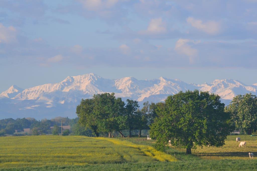 La vue depuis le jardin vers les Pyrenees