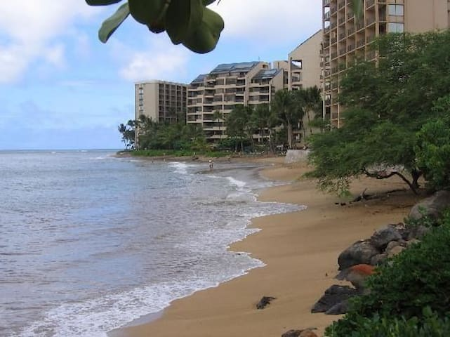 Sands of Kahana Condo Rental - Lahaina - Appartement en résidence