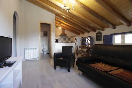 Apartamento bicentenario con techo de madera