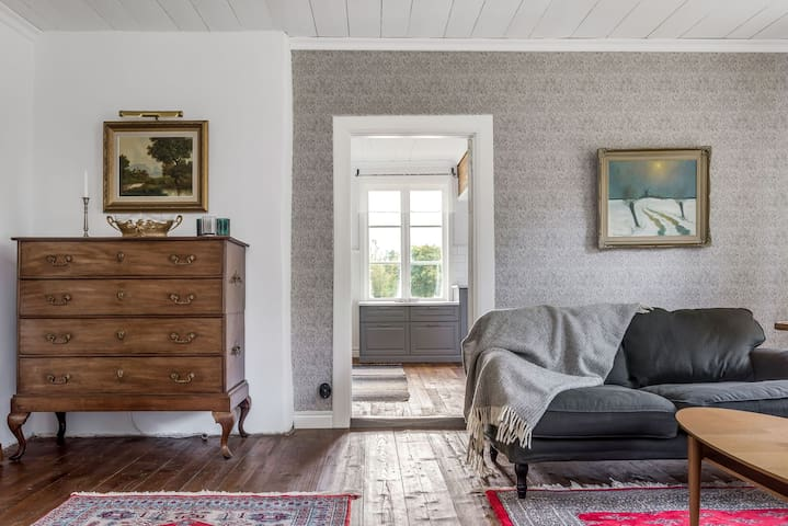 Large Family Swedish Country Manor House