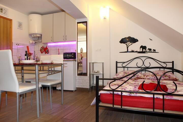 Apartma Savrin ROG1