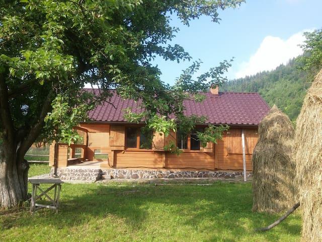 Cabin in Mountain