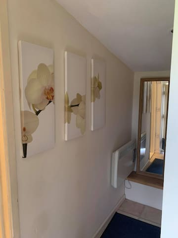 The dressing area leads to the shower room, it often becomes a dog bedroom as well as storage for luggage and clothing.