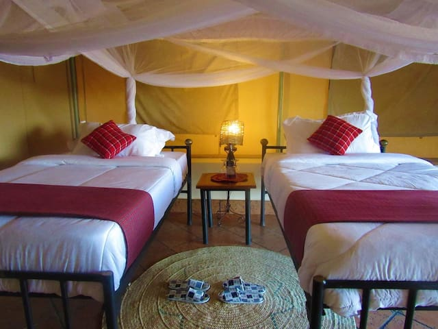 Zebra Kemang'ore Twin Bed Luxury Tent