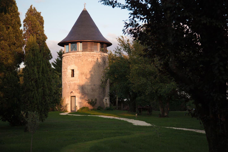 Le moulin au petit matin