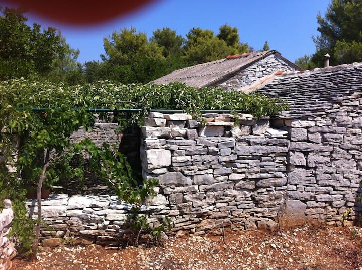 Rustical old style Cottage near Vela Luka