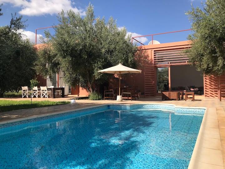 Maison de l'Architecte dans 2 Hectares d'oliviers