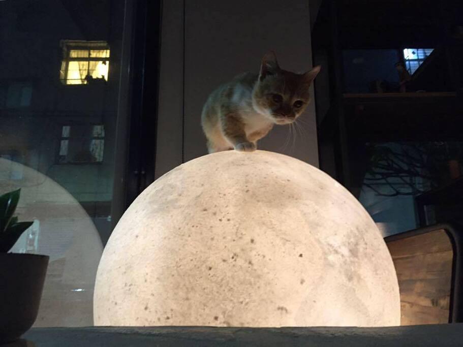 不管陰天晴天都有大月亮陪伴