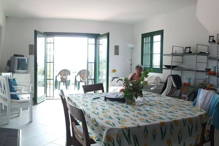 Unique house, lake & mountainview and own vineyard - Badacsonytomaj - Casa