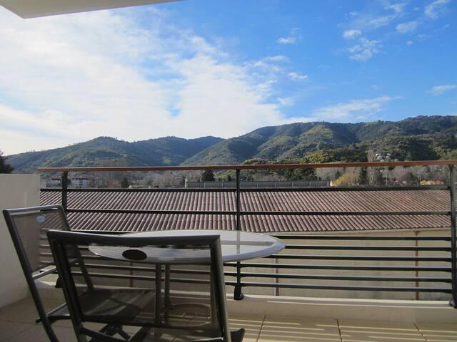 jolie vue du salon sur le Tanneron : montagne avec la forêt de mimosas