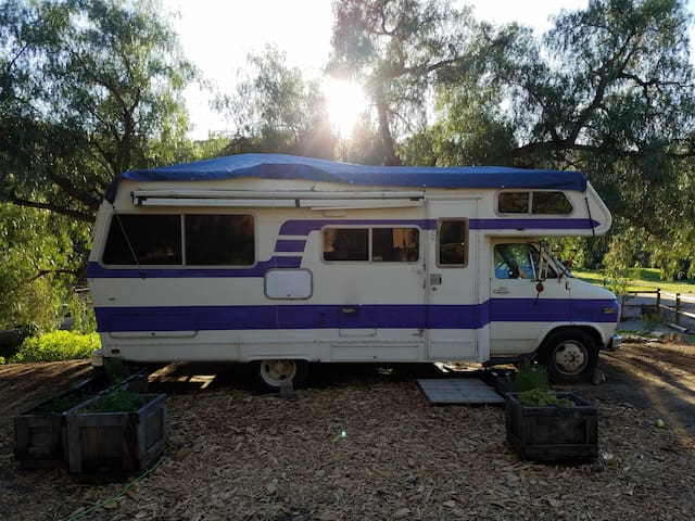 Charming RV Retreat - Santee - Asuntoauto