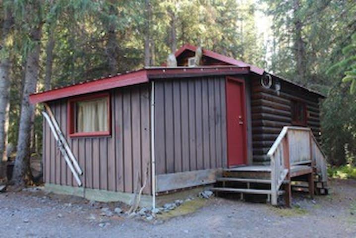 Kenai Lake Cabin #3 on creek - Cooper Landing - House
