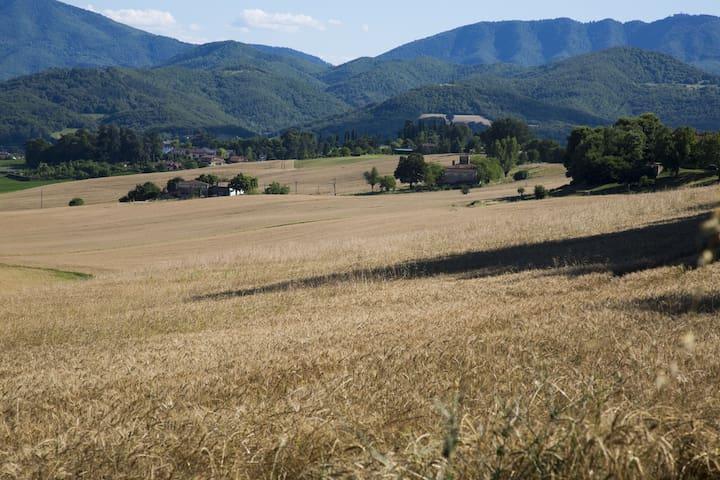 Tuscany Florence Mugello's nice apt - Borgo San Lorenzo - Daire