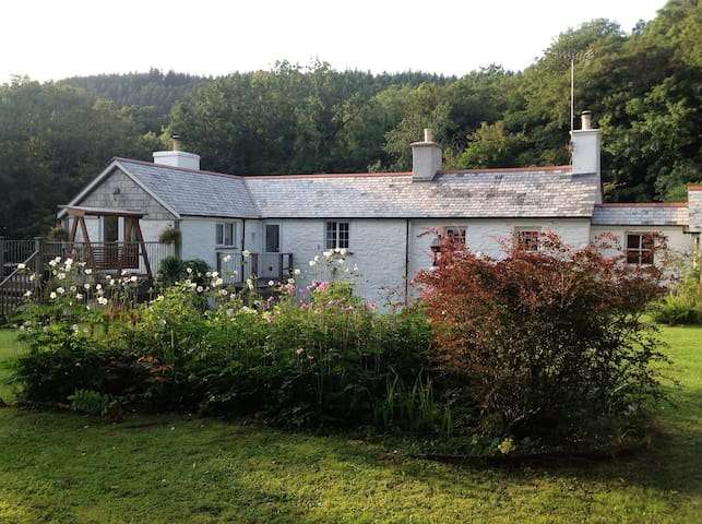 Rural, rustic, romantic cottage - Coryton - Casa