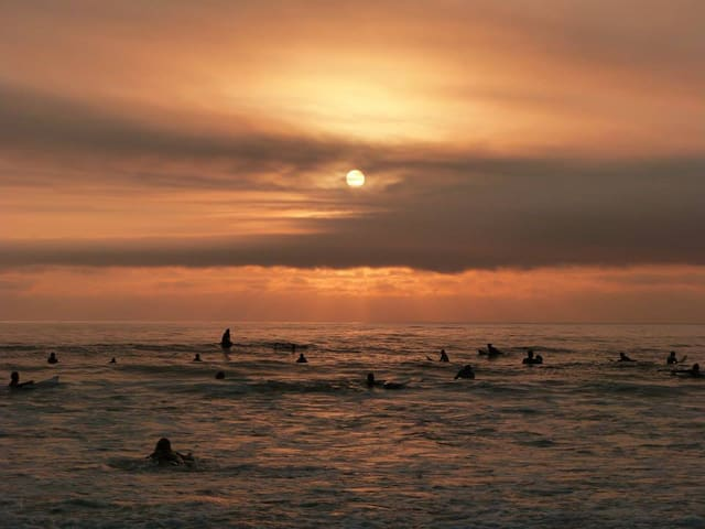 Surf schools on Baleia / Sul Beach.