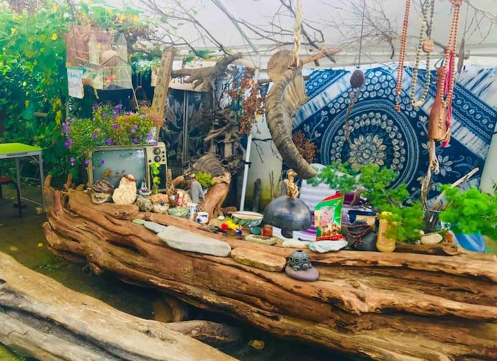 香格里拉-古城中心-木子小院客栈-小院可包车-可做饭-有茶喝-有花园!木子亲自开车带您游玩!