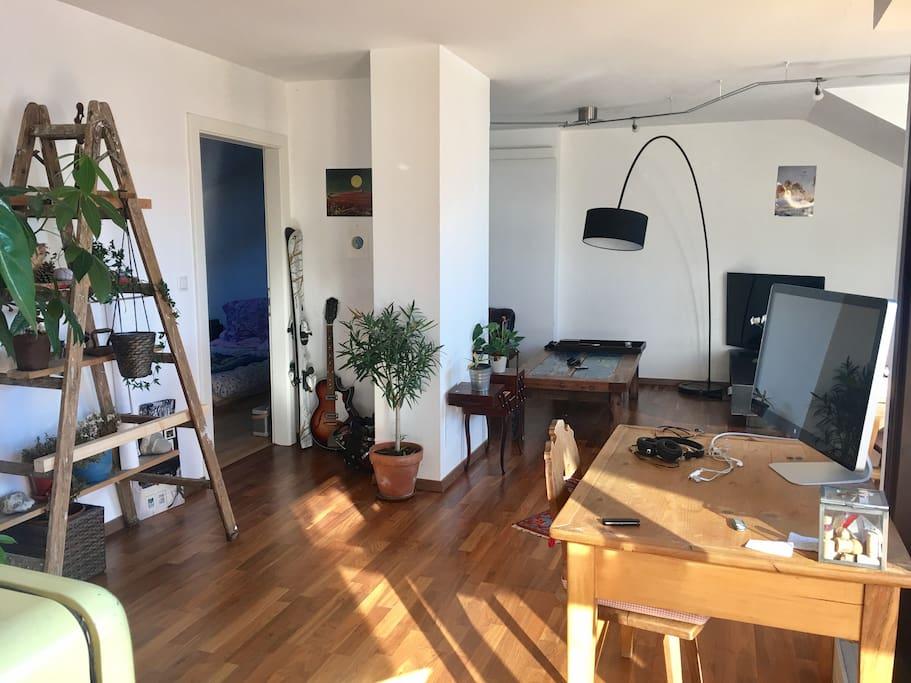Livingroom and bedroom