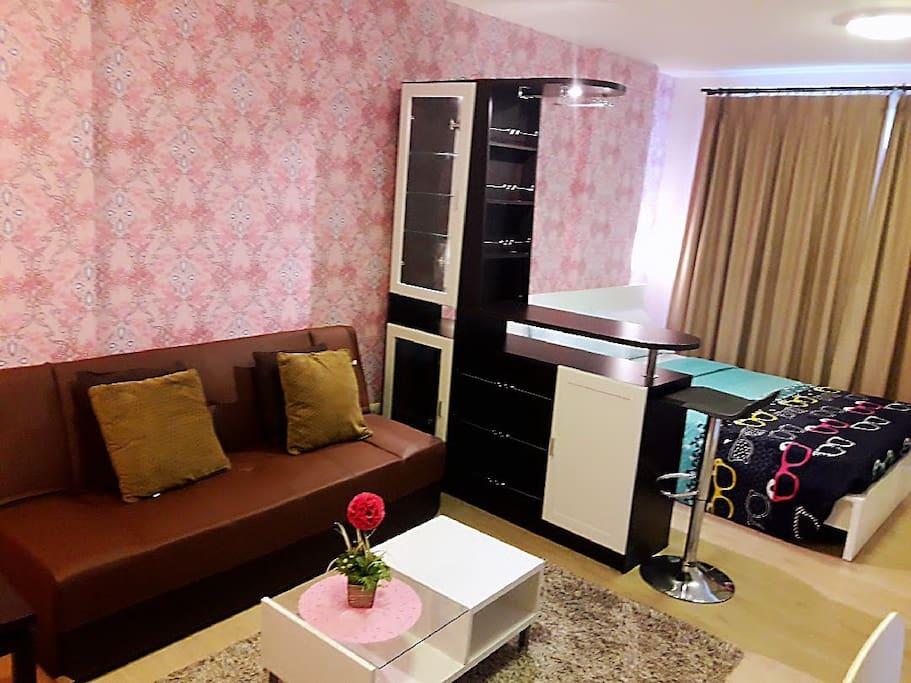 ห้องพักแบ่งเป็นสัดส่วนระหว่างเตียงนอนและโซฟาในการพักผ่อน โซฟาสามารถปรับเป็นที่นอนได้