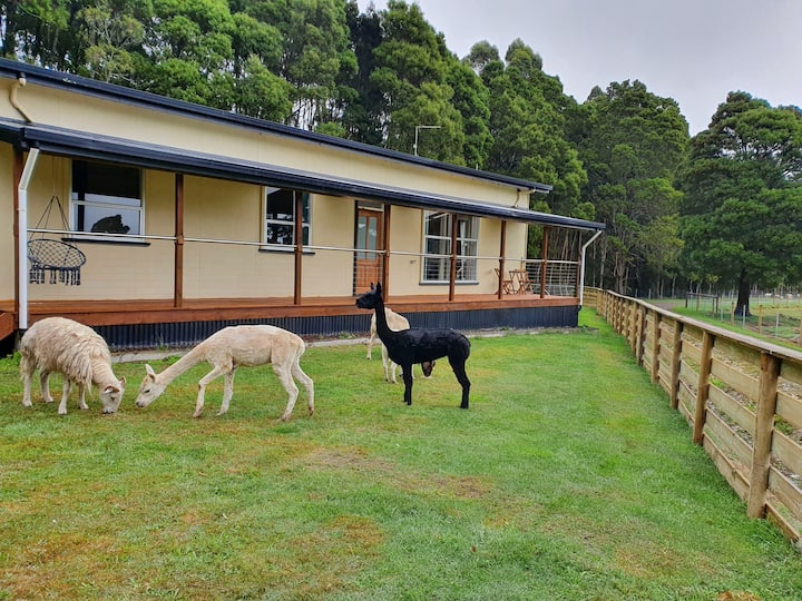 Farm stay at Lowana, Strahan