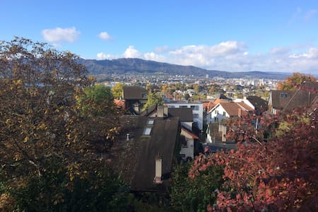 Great terrace and view of Zurich! - Apartmen
