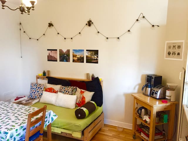 Chambre lumineuse dans le Mile-end  Sunny room!