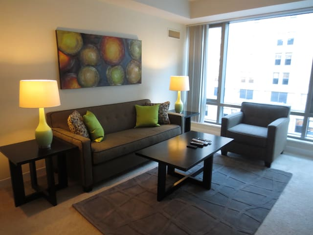 Upscale Furnished  2-Bedroom Apartment at West End - Boston - Apartment
