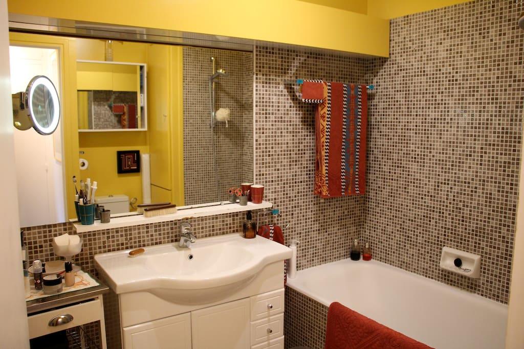 baignoire et douche WC très bon éclairage