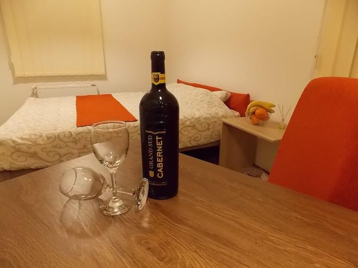 Vila Kety-Studio apartman za 2 osobe