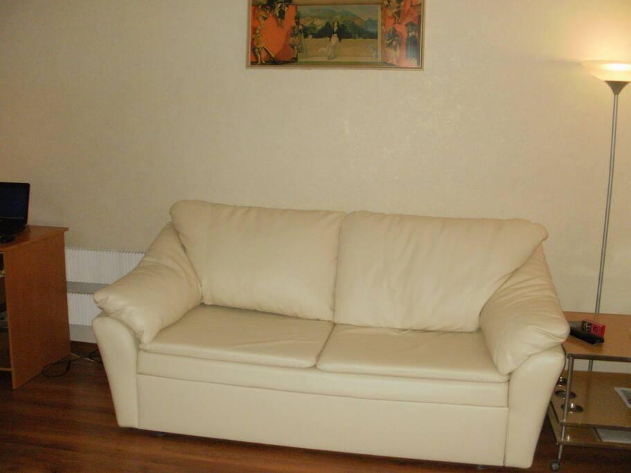 a sofa convertable into queen-size bed