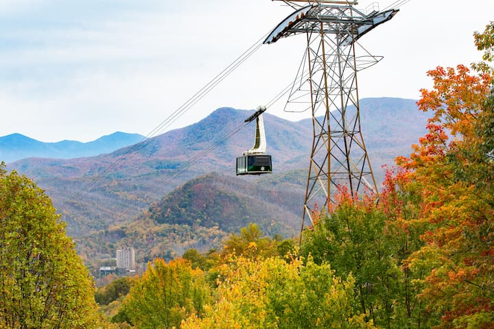View of Ober Gatlinburg tram floating above fall foliage