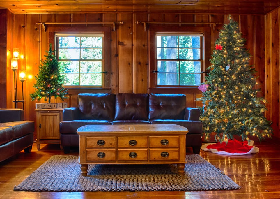 Cozy and Relaxing Living Room with Christmas tree.