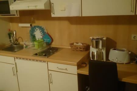 Kleines aber feines Appartement in Freiberg - Freiberg - Apartemen