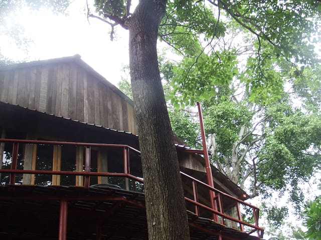 House and deck from below