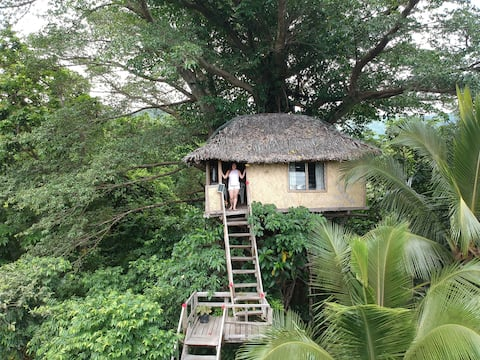 Jungle tree house with volcano view!