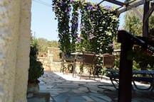 HAUS ELSA  mit Terasse und Garten in ruhiger Lage