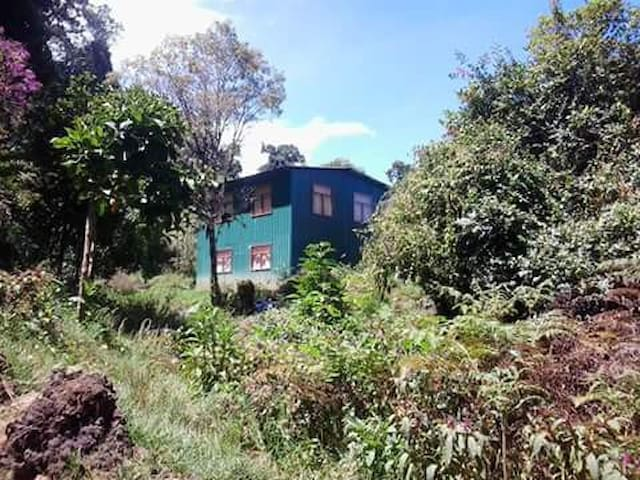 The Sanctuary Retreat - Copey - Huvila