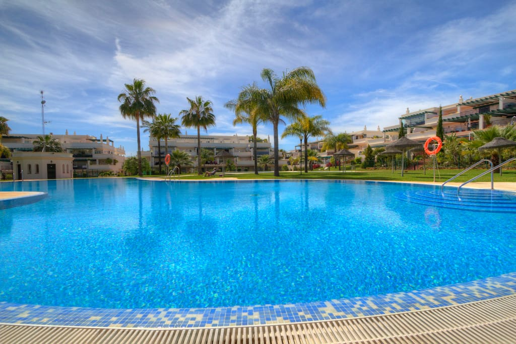 Large swimming pool in tropical gardens