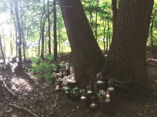 Camp Sherwood Rustic Retreat