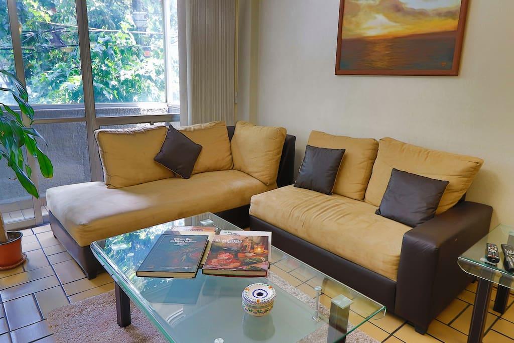 La sala / the living room