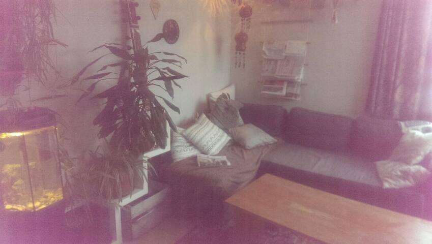 Cosey appartement in Trondheim - Trondheim - Apartamento