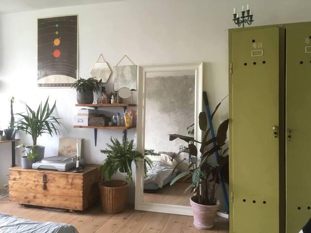 das Zimmer -  mit großen Spiegel, Pflanzen und Plattenspieler